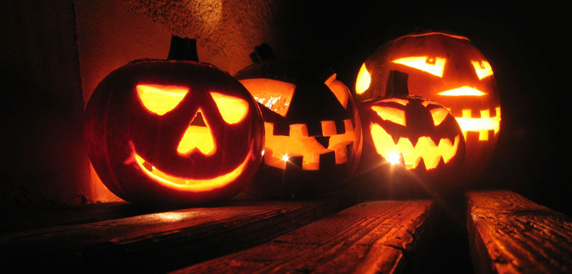 premature pumpkins that will likely rot before halloween day check checkity check - Halloween Which Day